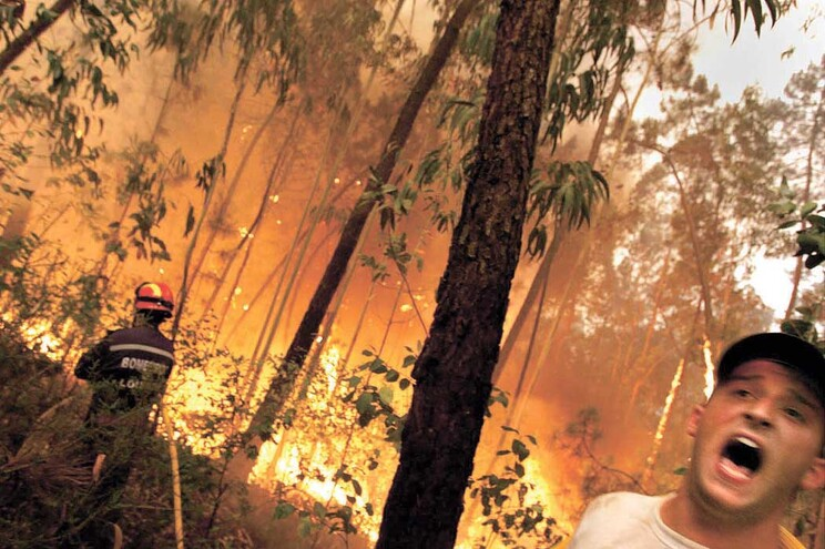 Interior varrido por incêndios penalizado no acesso a fundos para a agricultura