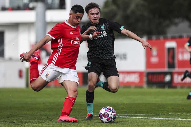 Benfica apurou-se para os quartos de final da UEFA Youth League