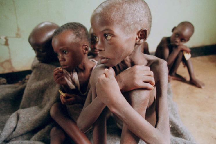 Cerca de 400 mil crianças podem morrer de fome na República Democrática do Congo