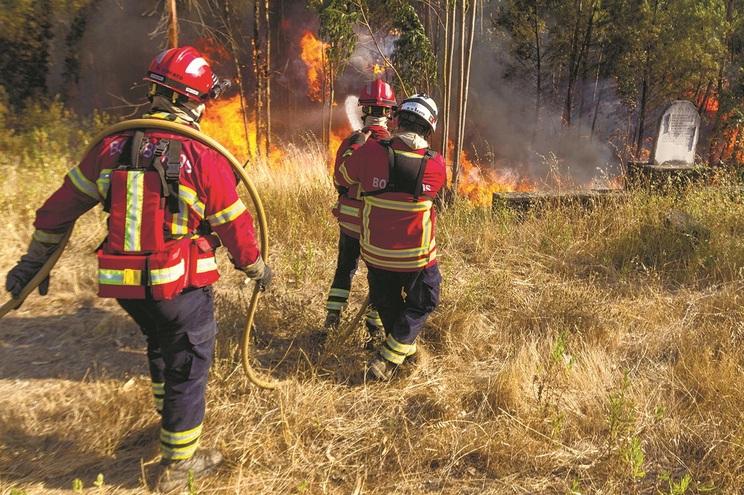 Arguido alertava colegas para os fogos que ateava