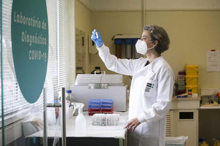Maria Manuel Mota, cientista e diretora do Instituto de Medicina Molecular