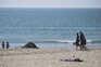 Poeiras do deserto do Saara atingem Portugal na terça-feira