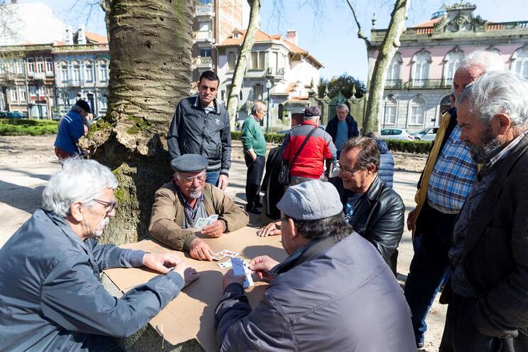 Jardim do Marquês, Porto