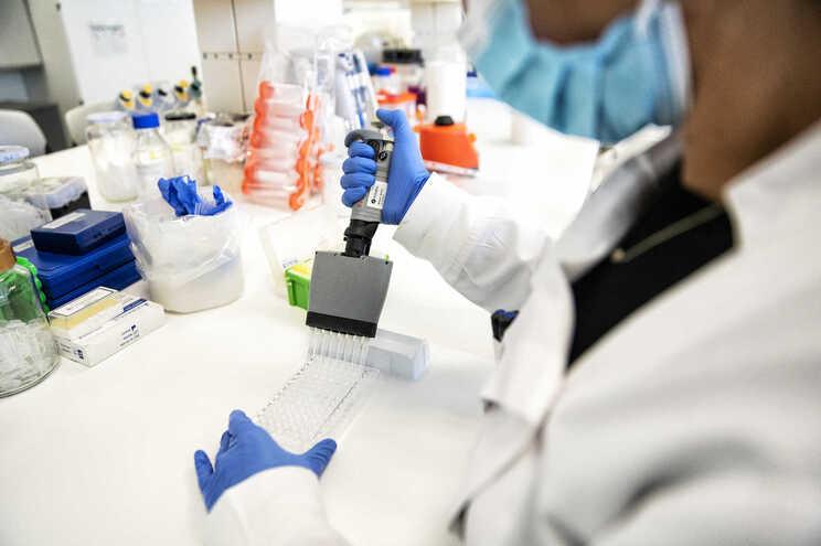 Farmacêuticas aceleram para terem vacinas autorizadas antes do final do ano