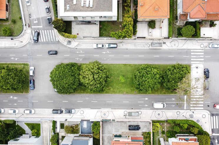 Moradores da Avenida Marechal Gomes da Costa temem corte de árvores da placa central