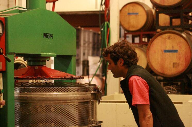 Teixeira cresceu com a família a aprender a fazer vinho como na ilha da Madeira