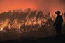 Registados 7610 fogos que consumiram 27.118 hectares de área ardida este ano