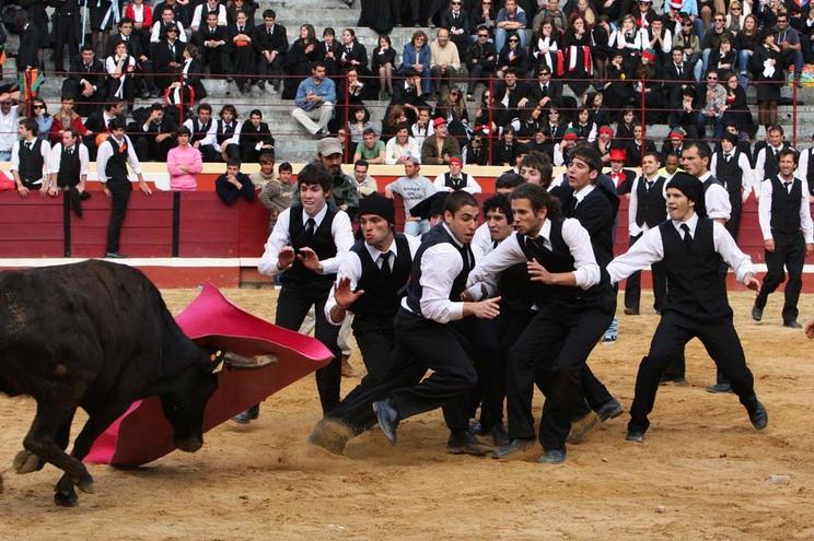 Garraiada da Queima das Fitas de Coimbra (2012)