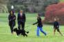 Morreu Bo, o cão português da família Obama