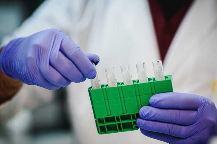 """Os cientistas adaptaram a técnica """"tesoura molecular"""" CRISPR para que reconhecesse o novo coronavírus"""