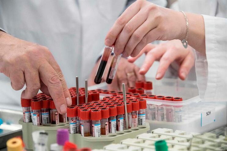 Testes serológicos foram realizados a 657 enfermeiros e assistentes operacionais expostos ao novo coronavírus