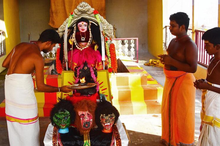 """Hindus indianos rezam à """"Corona Devi"""", a deusa do coronavírus"""