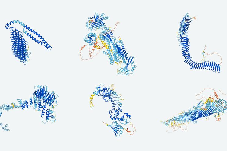 Algumas das proteínas descodificadas, entre as quais da da bactéria E.coli ou do parasita da malária