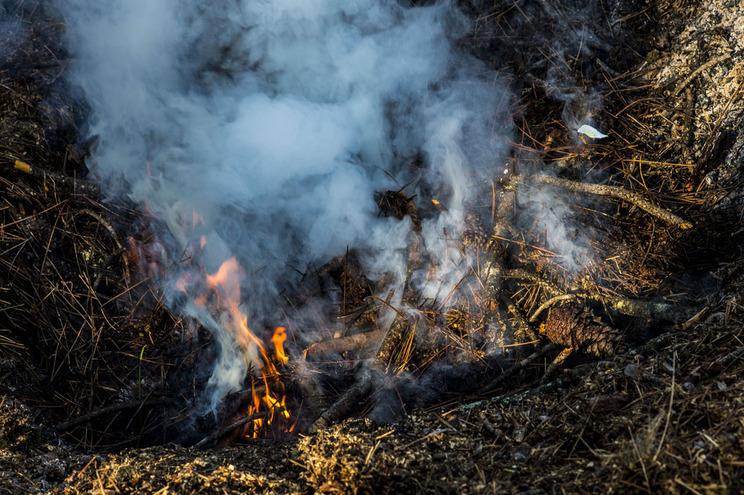 Queimadas no top das causa dos incêndios até 15 de agosto