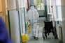 Menos doentes internados em dia com 832 casos e seis mortes por covid-19