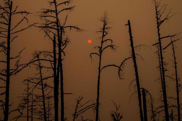 """A maioria dos incêndios concentrou-se na """"região norte e centro do país"""""""