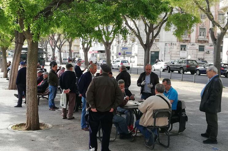 Grupo de reformados a jogar às cartas esta quinta-feira no jardim da Alameda, em Lisboa
