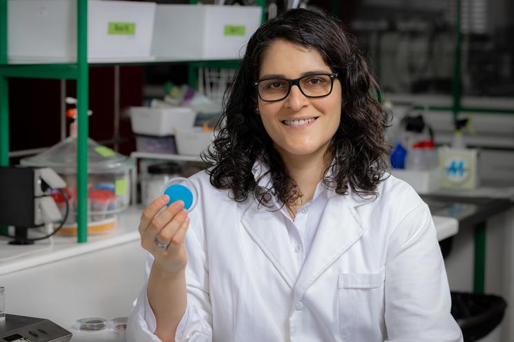 Liliana Tomé, da Universidade Nova de Lisboa, uma da cientistas distinguidas