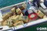 GNR apreende mais de uma tonelada de haxixe na ilha de Faro