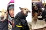 Cadela resgatada com vida após 15 dias perdida na neve