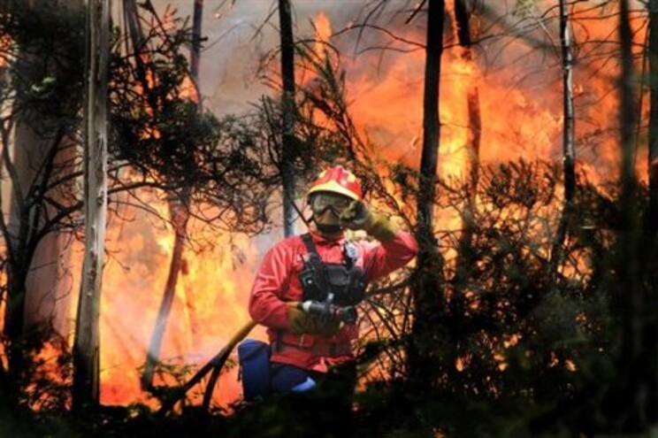 Risco máximo de incêndio em 20 concelhos de Portugal continental