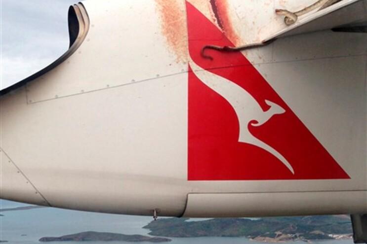 A cobra manteve-se em cima do avião durante as duas horas de viagem