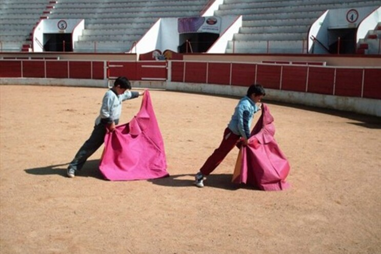 Portugal tem 12 escolas onde crianças aprendem a tourear