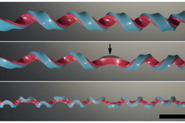 Cientistas descobrem nova forma geométrica