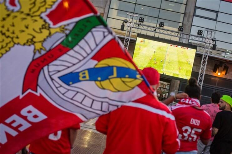 Benfica vai manter ofertas aos árbitros