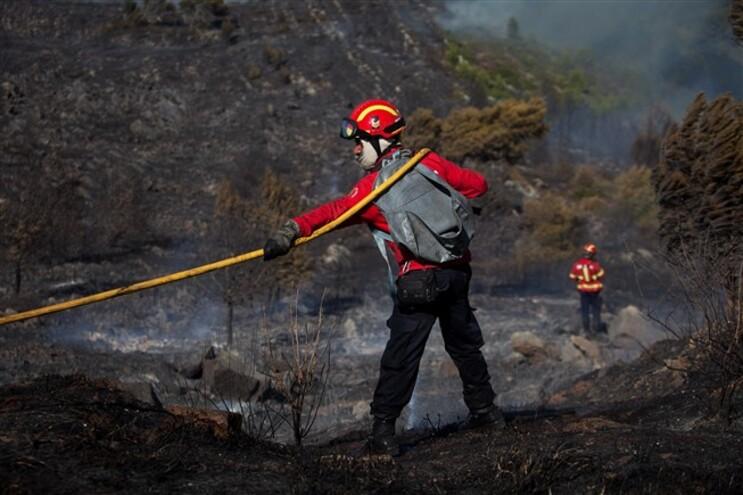 75% dos incêndios florestais são de origem criminosa