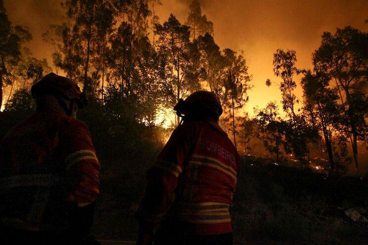 Fogo em Arouca chegou a ser combatido por mais de 900 bombeiros, com o apoio de nove meios aéreos