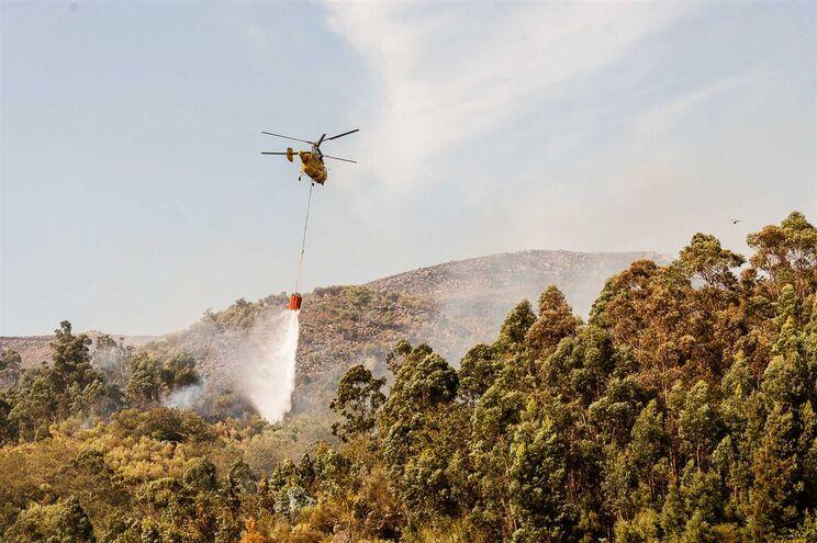 """""""Falhas notórias"""" no controlo dos helicópteros de combate a fogos"""