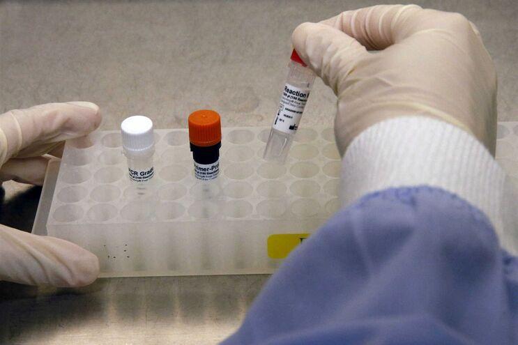 Investigadores identificam novas terapias contra leucemia