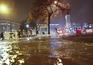 Bombeiros receberam 187 pedidos de ajuda devido ao mau tempo