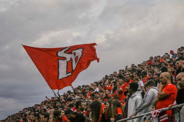 Adeptos do Benfica apoiam a equipa em Tondela.