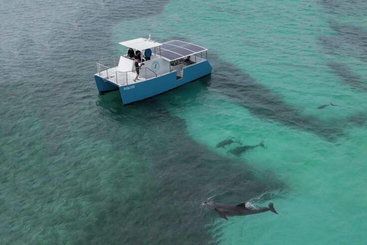 Barco a energia solar passeia com os golfinhos sem fazer poluição