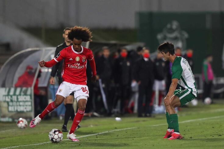 Tomás Tavares, lateral do Benfica que estava emprestado ao Alavés