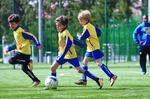 Futebol de formação em suspenso e... à espera da DGS