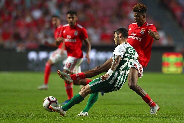 """O recado de Afonso Figueiredo após o Benfica-Rio Ave: """"Dentro de campo não havia buracos"""""""