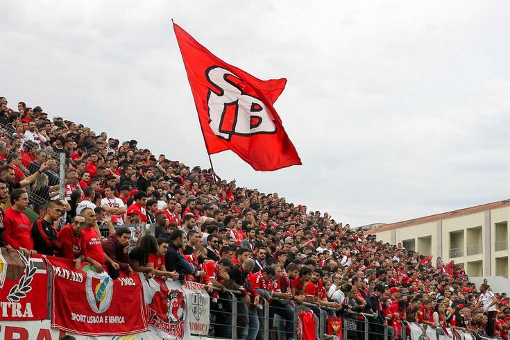 Tribunal iliba Benfica e dinamita a Disciplina