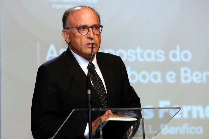 Varandas Fernandes, vice-presidente do Benfica