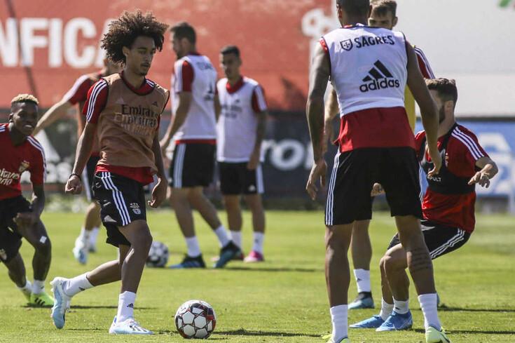 Tomás Tavares e João Ferreira integraram treino do Benfica
