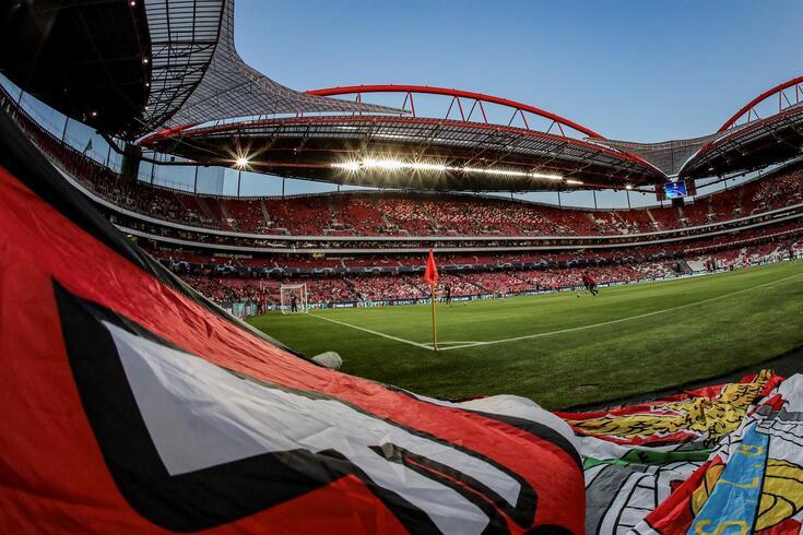 Benfica elege presidente para o próximo mandato