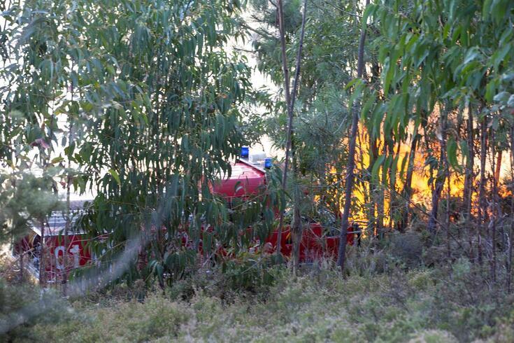 Incêndio em Valongo