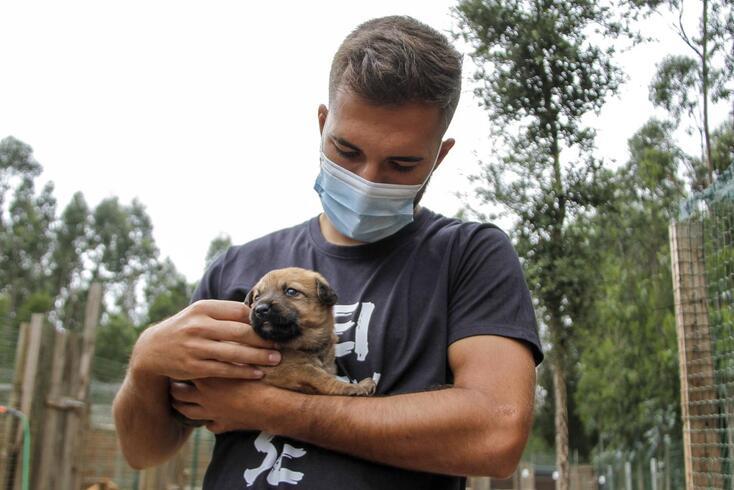 Jogadores do Feirense visitam Associação que recolheu cães vítimas do incêndio de Santo Tirso