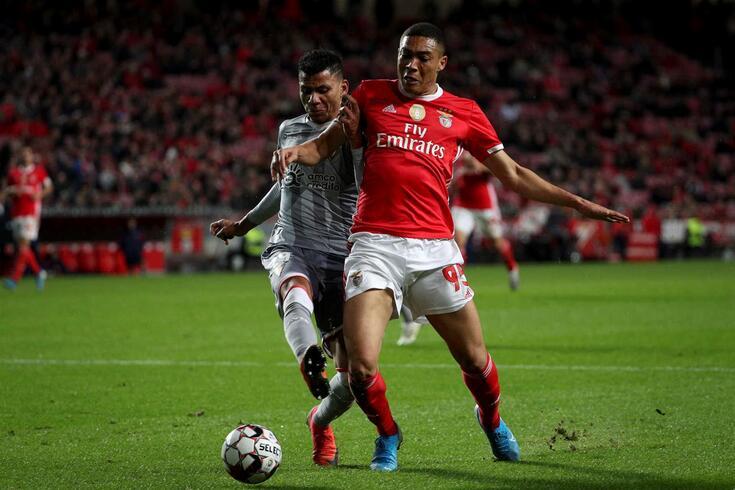 Há penálti no Benfica-Aves? Tribunal O JOGO é unânime