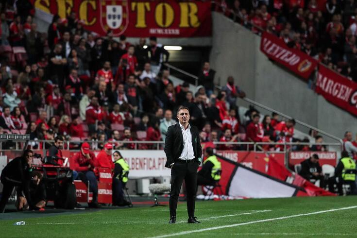 Carlos Carvalhal, treinador do Rio Ave, durante a partida frente ao Benfica