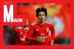 Recorde os acontecimentos que marcaram a semana do Benfica