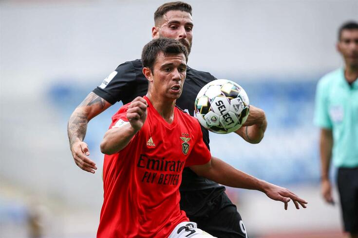 Henrique Araújo estará no início dos trabalhos do planter senior do Benfica