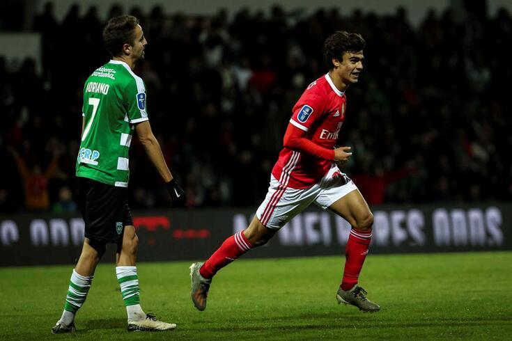 Jota foi o autor do golo do Benfica no empate 1-1 no terreno do Covilhã.